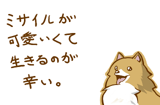 20100627-misile.png