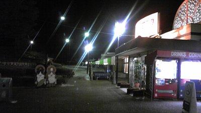 20110104-bodaizi.jpg