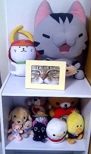 20111206-zitaku.jpg