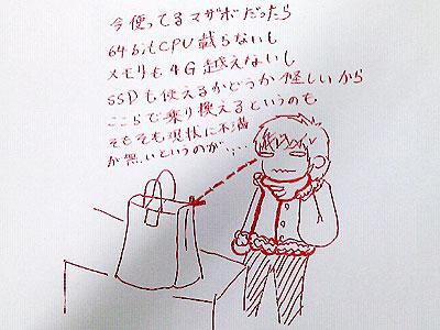 20120106-hukubukuro.jpg