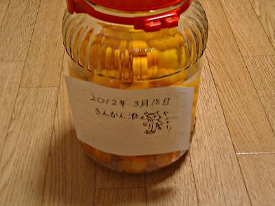 20120318-kinkan3.jpg