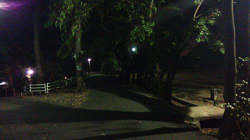 20131108-nightroad01.jpg