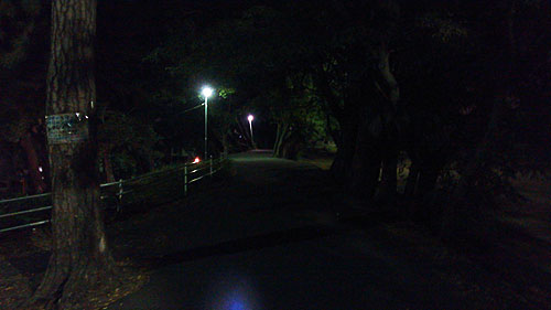 20131108-nightroad02.jpg